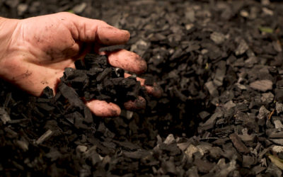 Carbó vegetal – Idària