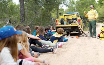 Educar en els incendis forestals del futur